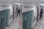 Cảnh sát Mỹ 'hồn xiêu phách lạc' vì con chuột nhắt