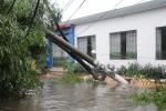 Bão số 1 càn quét, Thái Bình, Hải Phòng thiệt hại nặng nề