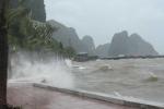 Thông tin mới nhất về siêu bão số 7 Sarika