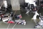 Trở lại bãi xe hàng ngàn chiếc bị 'đánh đắm' trong mưa ngập ở Sài Gòn