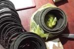 Đột nhập vào công ty khai thác đá để trộm 4.000 kíp nổ