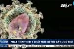 Phát hiện thêm 7 chất mới có thể gây ung thư