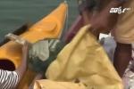 Khách tây bỏ tiền để được chèo thuyền vớt rác trên sông ở Hội An