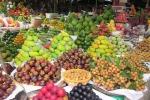 Cảnh báo 13 doanh nghiệp xuất khẩu trái cây có dấu hiệu lừa đảo