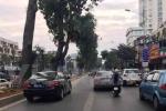 Xe biển xanh 'đua nhau' chiếm làn đường cho xe buýt nhanh