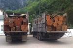 Đoàn xe chở gỗ khủng 'đại náo' trên quốc lộ 7