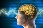 Những nguyên nhân có thể gây u não ai cũng phải biết