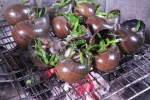 Bắt chước người lớn mò ốc bươu vàng, ướp muối tiêu làm tái chanh, 4 trẻ suýt chết