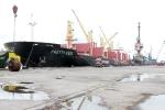 Thực hư Giám đốc Cảng vụ Hàng hải Thanh Hóa 'xé rào' cho tàu 50 nghìn tấn ra vào cảng