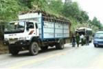 Xe khách tông đuôi xe tải, 11 người bị thương