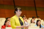 Danh sách 17 doanh nhân trúng cử đại biểu Quốc hội khóa XIV