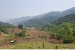 Người dân tộc thiểu số lấy tiền tái định cư 'rót' vào Thiên Ngọc Minh Uy