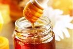 Thói quen bảo quản khiến mật ong hóa chất độc