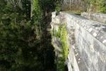 Bí ẩn về cây cầu chó đi qua là lao xuống tự tử