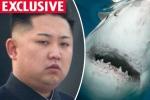 Thanh niên anh đòi ám sát Kim Jong-un bằng kế hoạch 'điên rồ'
