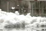 Kinh hoàng bọt trắng lạ phủ kín mặt kênh Tàu Hủ, TP.HCM