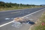 Bắt tài xế xe máy tông chết 2 người rồi bỏ trốn