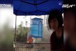 Phát thanh viên 'sống ảo' tự đốt ôtô, tường thuật trực tiếp trên Facebook để câu like
