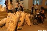 Sinh viên Ngân hàng đi nhặt từng vỏ chai nhựa làm từ thiện