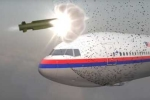 Thân nhân hành khách MH17 đòi kiện Tổng thống Putin