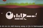 Clip: Cơ thể con người ra sao sau khi chết đi?