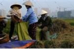 Những con số giật mình về kinh tế Việt Nam qua cảnh báo của tổ chức thế giới