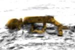 Giật mình về 'xác người ngoài hành tinh' trên Sao Hỏa