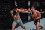 Những pha knock-out khủng khiếp nhất trên sàn đấu MMA