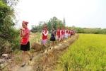 Nữ tiếp viên hàng không đi giày cao gót gặt lúa