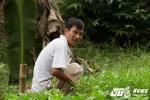 TP.HCM ngập nặng, nông dân 'khóc ròng' khi mất trắng hàng trăm triệu đồng