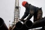 Giá dầu thô 'suy sụp' bất chấp số giàn khoan giảm tại Mỹ