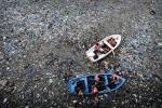 5 nguyên nhân đưa Trái đất tiến gần nguy cơ đại tuyệt chủng thứ 6