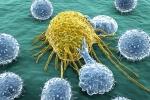 Sống lành mạnh vẫn bị ung thư: Vì sao?