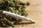 Người lạ mời hút cỏ Mỹ, 3 thanh niên nhập viện cấp cứu