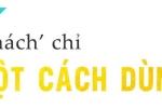 Dao dien Viet Tu: 'Gioi giai tri khong the thieu chieu tro' hinh anh 2