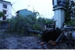 Dự báo thời tiết ngày 17/7: Bão số 2 càn quét, mưa to từ miền Bắc tới miền Trung