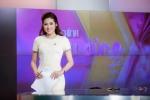 Những mỹ nhân Việt đang theo đuổi sự nghiệp truyền hình