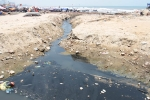 Du khách thản nhiên tắm bên khe nước thải đen ngòm ở biển Sầm Sơn