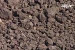 Tiếp tục phát hiện 10 tấn bùn đen của Formosa chôn lấp trong công viên
