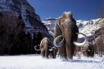 Bắt đầu kỷ băng hà mới, mùa đông 2017 sẽ lạnh giá khủng khiếp?