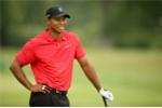 Huyền thoại Tiger Woods dự định trở lại sân golf vào tháng 10