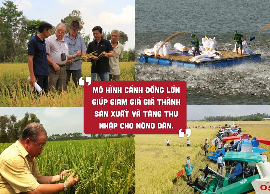 Vo Tong Xuan 10