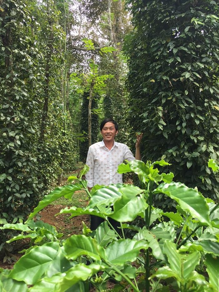 Quyen Linh, Hoai Linh, My Tam so huu tai san sieu 'khung' van song cuc gian di hinh anh 7