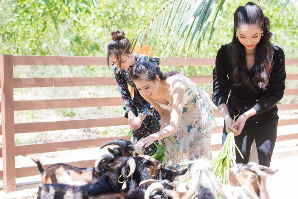 Thi sinh chung khao phia Nam Hoa hau Viet Nam 2018 doi nang tham gia trong cay hinh anh 5