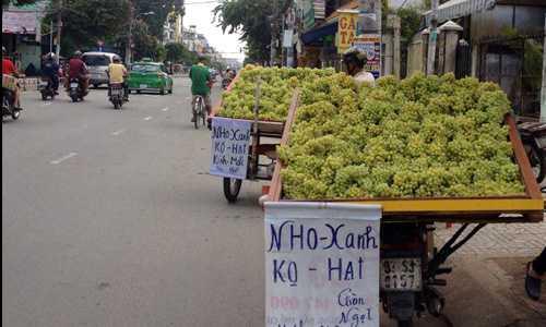 'Truy tim' nhung loai trai cay Trung Quoc doi lot hang Viet hinh anh 1