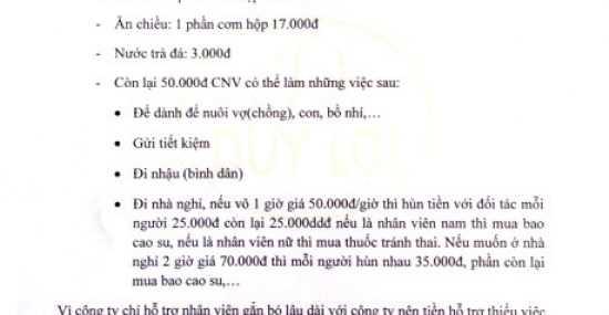 Chinh sach ky la cua cac cong ty: Ho tro tien nuoi bo nhi, mua bao cao su, tang phieu di lam muon... hinh anh 1