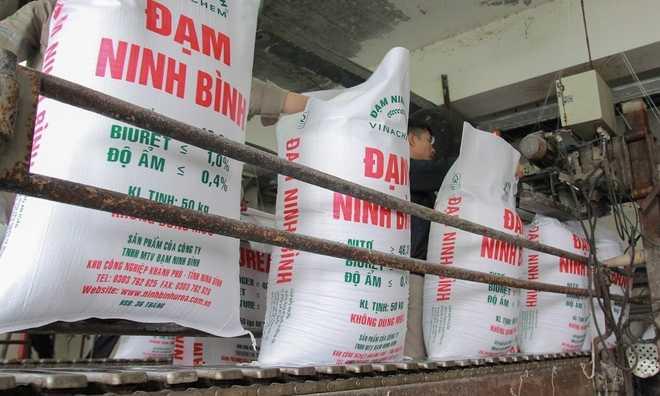 Dam Ninh Binh hoat dong lai sau khi lo 3.100 ty dong hinh anh 7