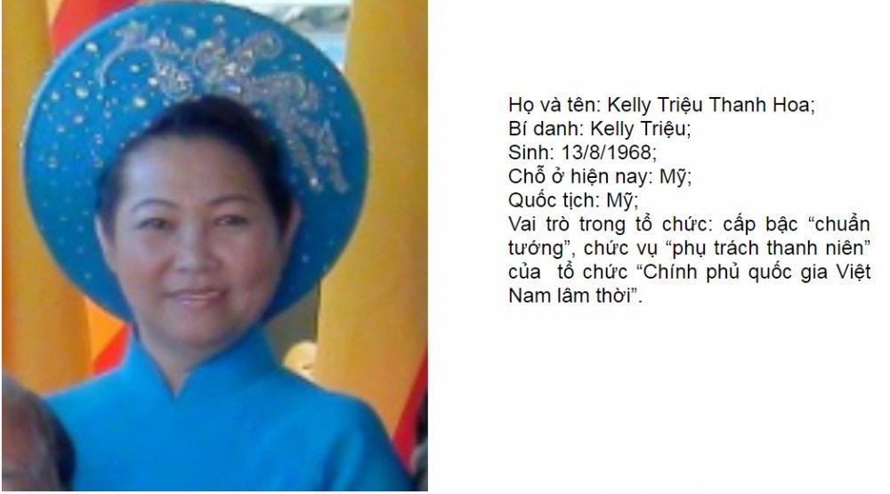 Chan dung 7 ke cam dau to chuc khung bo 'Chinh phu quoc gia Viet Nam lam thoi' hinh anh 2