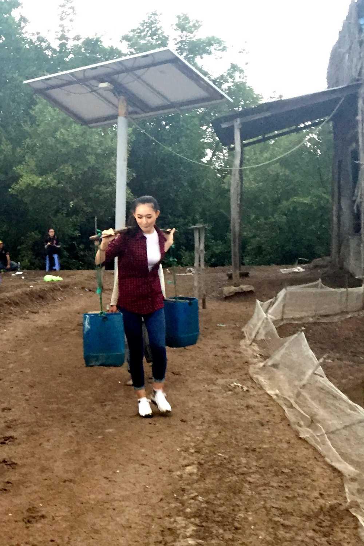 Tran Thanh bi thi sinh Hoa hau Viet Nam 'don tim' hinh anh 1