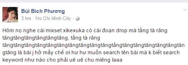 Dac diem 'nhan dang' Bich Phuong la gi? hinh anh 14